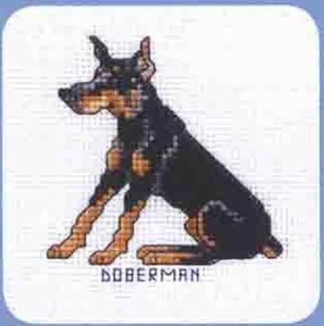 Схема вышивания крестом - Доберман
