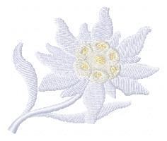 Схема вышивания для машинной вышивки