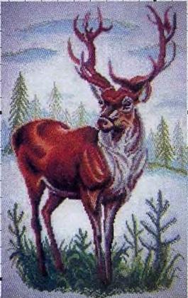 Схема вышивания бисером - Король Севера