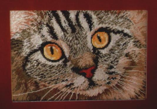 Схема вышивания крестом - Глаза кошки