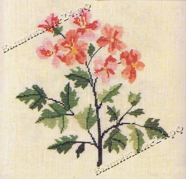 Схема вышивания крестом - Герань, цветы