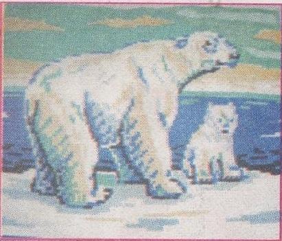 Схема вышивания бисером - Белые медведи