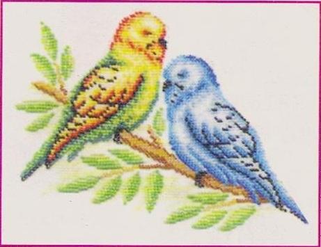 Схема вышивания бисером - Волнистые попугайчики