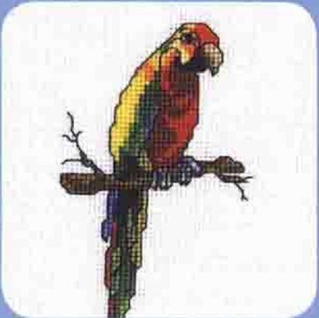 Схема вышивания крестом - Попугай